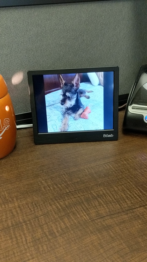 Amazon Customer Reviews Digital Picture Frame 8 Inch Remote