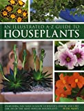 An Illustrated A-Z Guide to Houseplants: Everything You Need to Know to Identify, Choose and Care for 350 of the Most Popular Houseplants