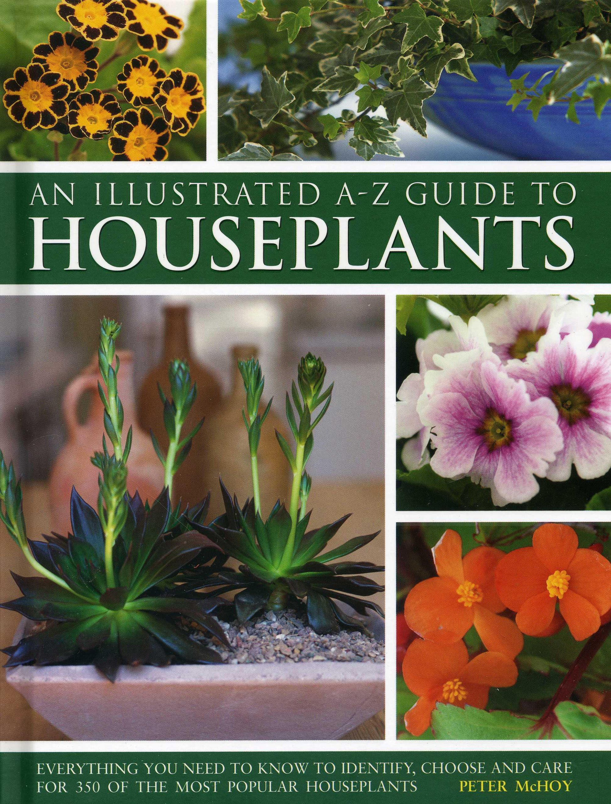 illustrated a z guide to houseplants everything you need to know to identify choose and care for 350 of the most popular houseplants peter mchoy - Flowering House Plants Identification