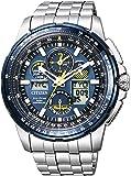 [シチズン]CITIZEN 腕時計 PROMASTER プロマスター 流通限定 SKYシリーズ ブルーエンジェルスモデル JY8058-50L メンズ
