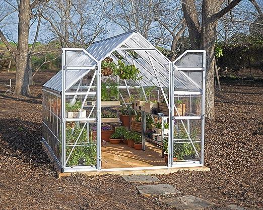 Palram Equilibrio 8 x 12 pies Plata Efecto Invernadero Huecas con Paneles de policarbonato y en Techo – Transparente: Amazon.es: Jardín