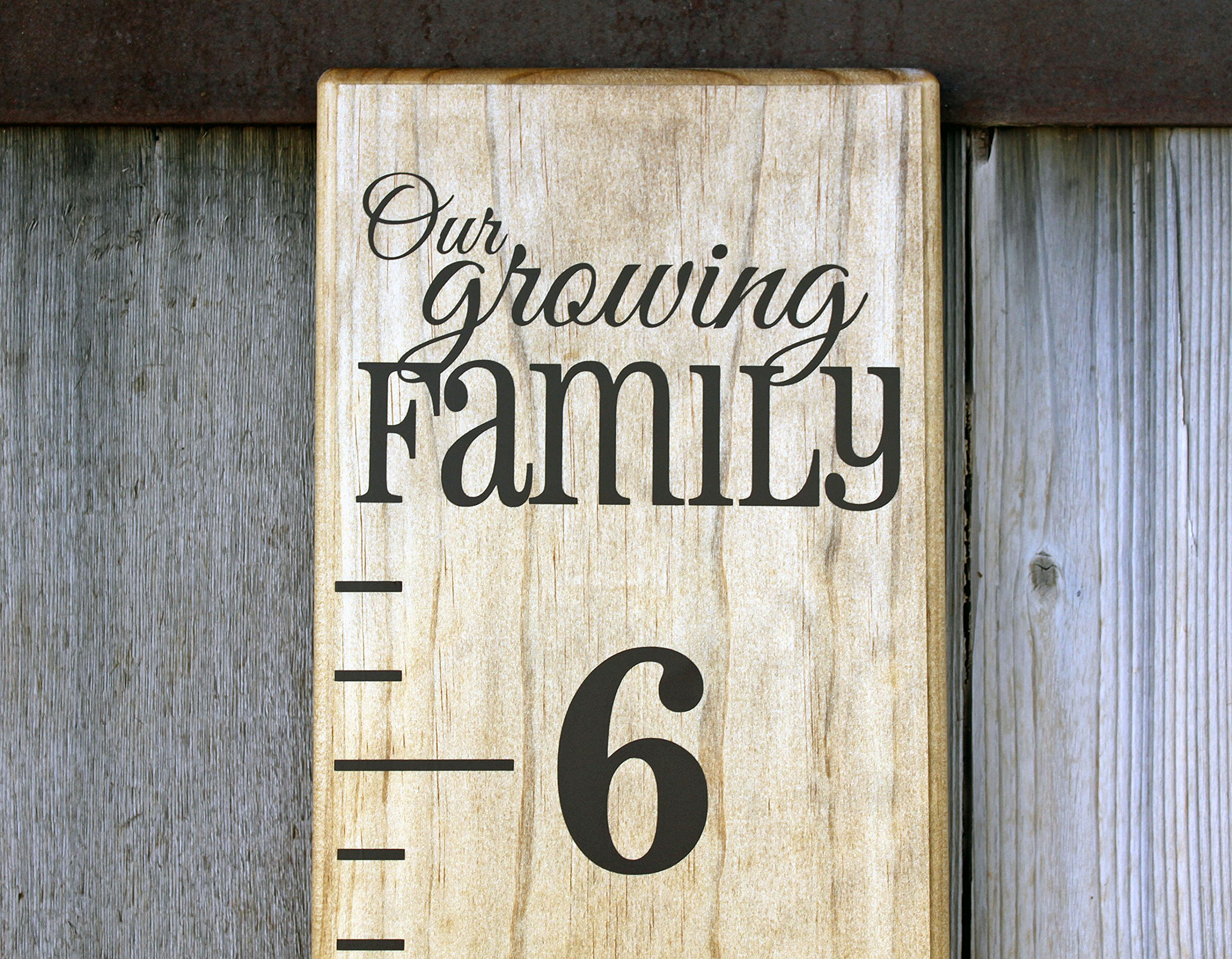 DIY Vinyl Growth Chart Ruler Decal Kit, Our Growing Family by Little Acorns
