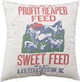 Primitives by Kathy Sweet Feed Pillow, 15.5 by 15.5-Inch