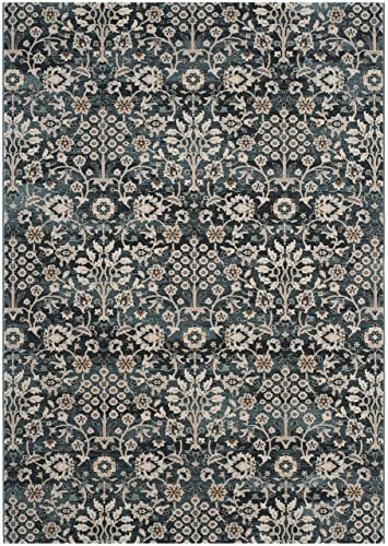 Safavieh Serenity Collection SER209G Turquoise and Cream Area Rug 4 x 6