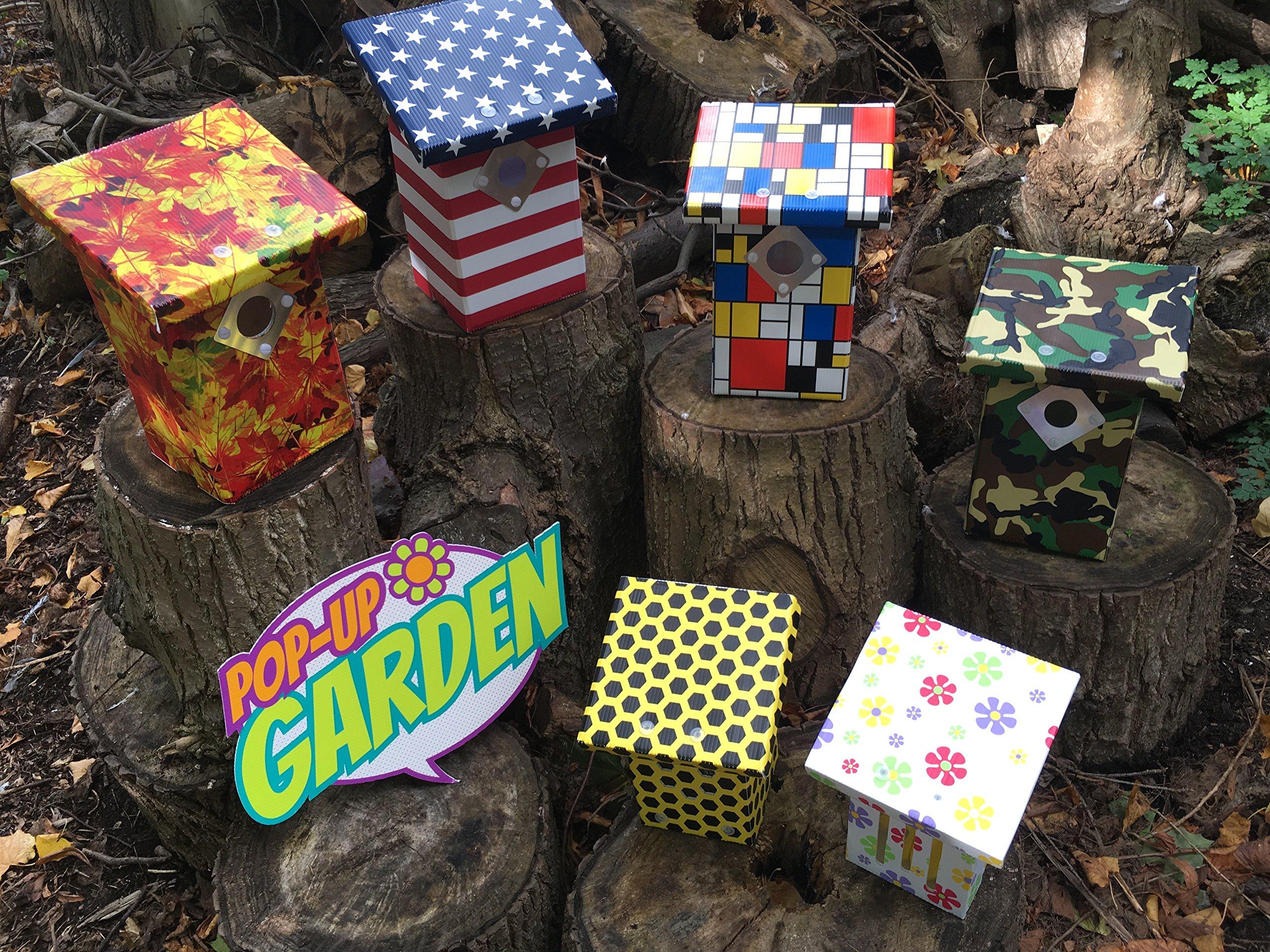 Pop-Up Garden Crazy Daisy Butterfly Hotel Box Kit, 100% Recyclable, Eco-Friendly