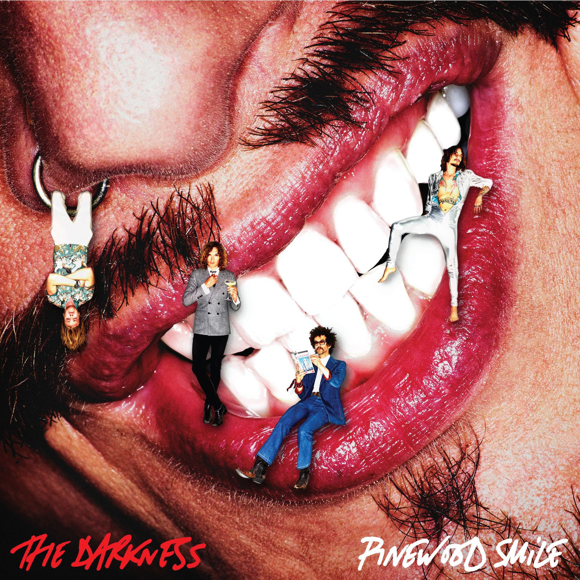 CD : The Darkness - Pinewood Smile (CD)