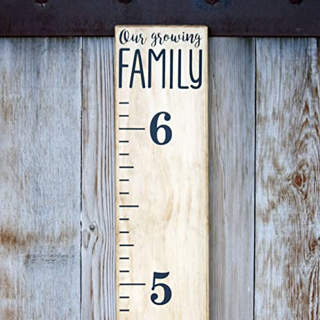 diy vinyl growth chart ruler decal kit our growing family modern
