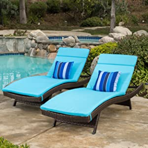 Christopher Knight Home Salem Chaise Lounge Cushion (Set Of 2)