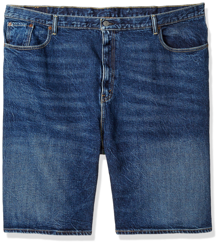 Levi's Men's 569 Loose Straight Denim Shorts , garland/stretch, 54