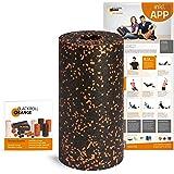 Blackroll Orange Rouleau d'auto-massage Standard, avec DVD et poster d'exercices (en langue allemande)