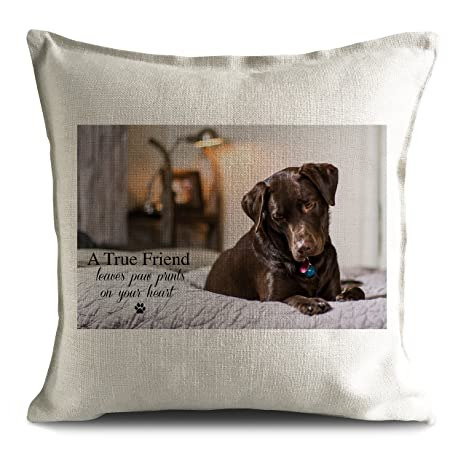 Marrón Chocolate perro Labrador Breed Pet cojín funda de ...