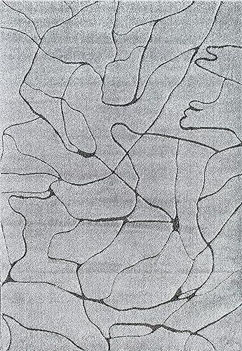 CosmoLiving by Cosmopolitan Area Rug, 5 0 x7 6 , Granite