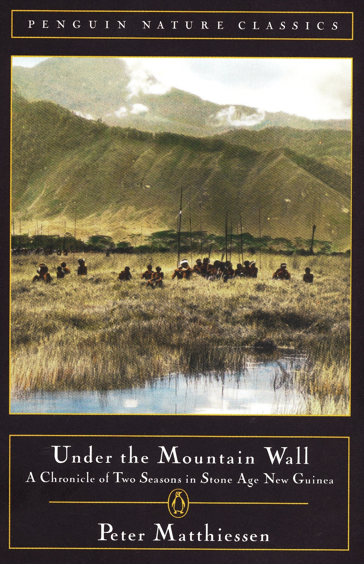 Under the Mountain Wall: A Chronicle of Two Seasons in Stone Age New ...