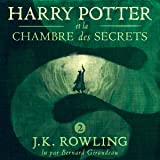 Harry Potter et la Chambre des Secrets: Harry Potter 2