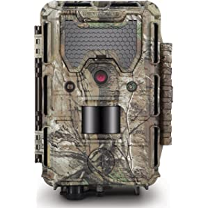 Bushnell 14MP Trophy Cam HD Aggressor No Glow Review
