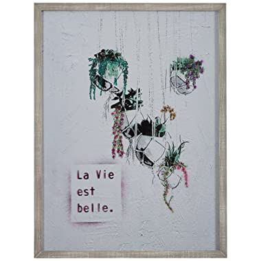 Life is Beautiful Hanging Plants Print in Grey Wood Frame, 16.5  x 20.5