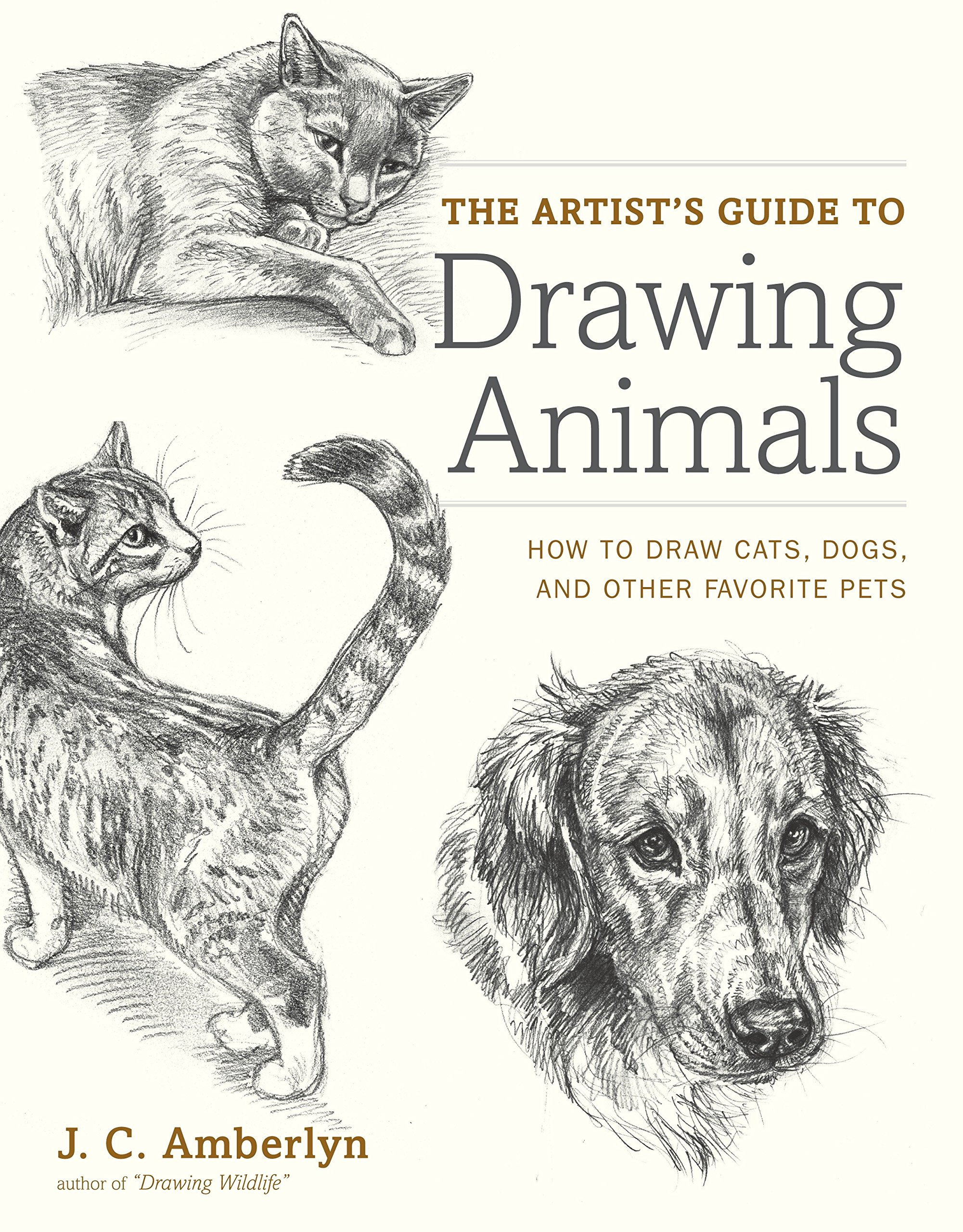 The artists guide to drawing animals how to draw cats dogs and other favorite pets j c amberlyn 9780823014231 amazon com books