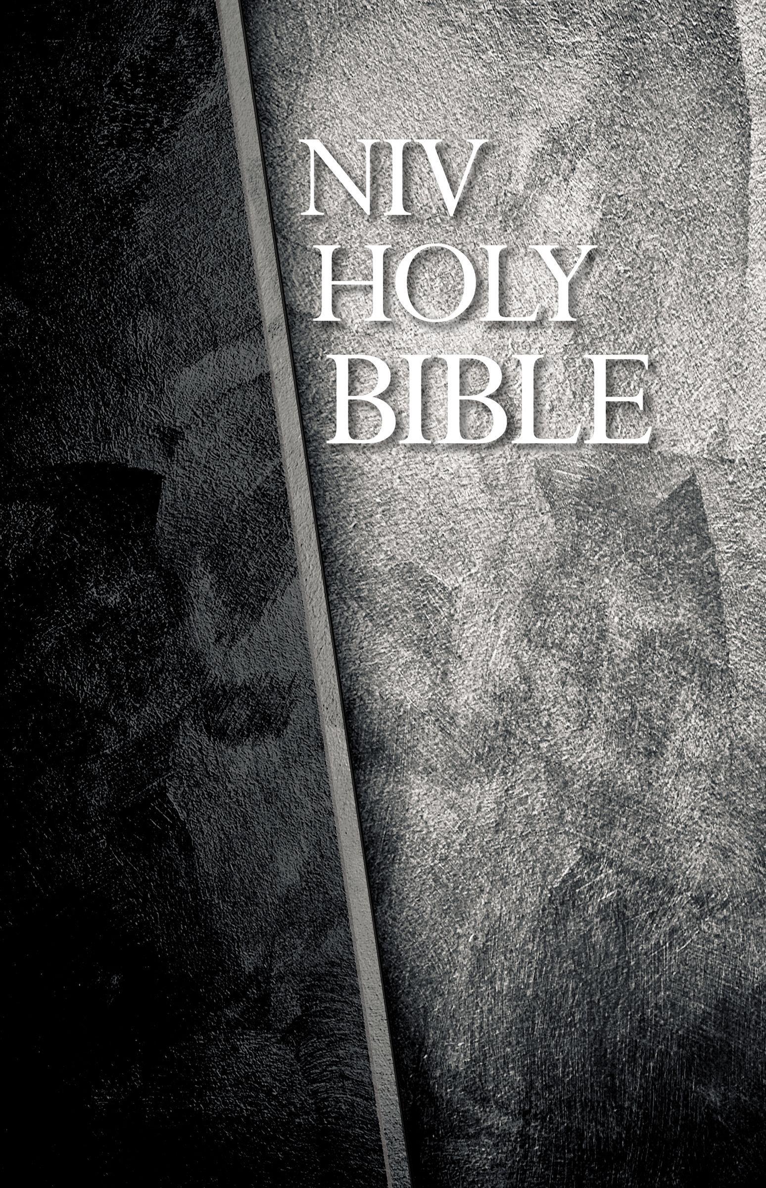 Download NIV, Economy Bible, Hardcover, Black/Gray ePub fb2 ebook