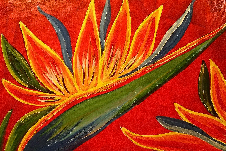 Amazon.com: Bird of Paradise Tropical Hawaiian Flower Acrylic ...