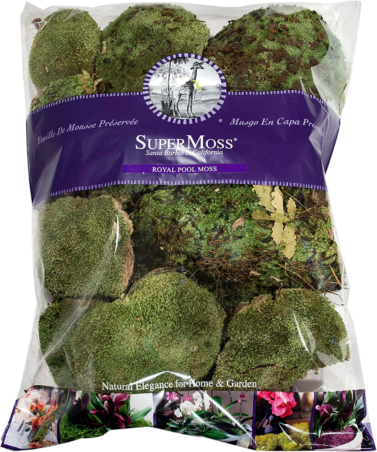 21881 Fresh Green 3lbs Royal Pool Moss Preserved SuperMoss