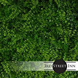 Artificial Hedge - Outdoor Artificial Plant - Great Boxwood and Ivy Substitute - Sound Diffuser Privacy Fence Hedge - Topiary Greenery Panels (12, Juniper)