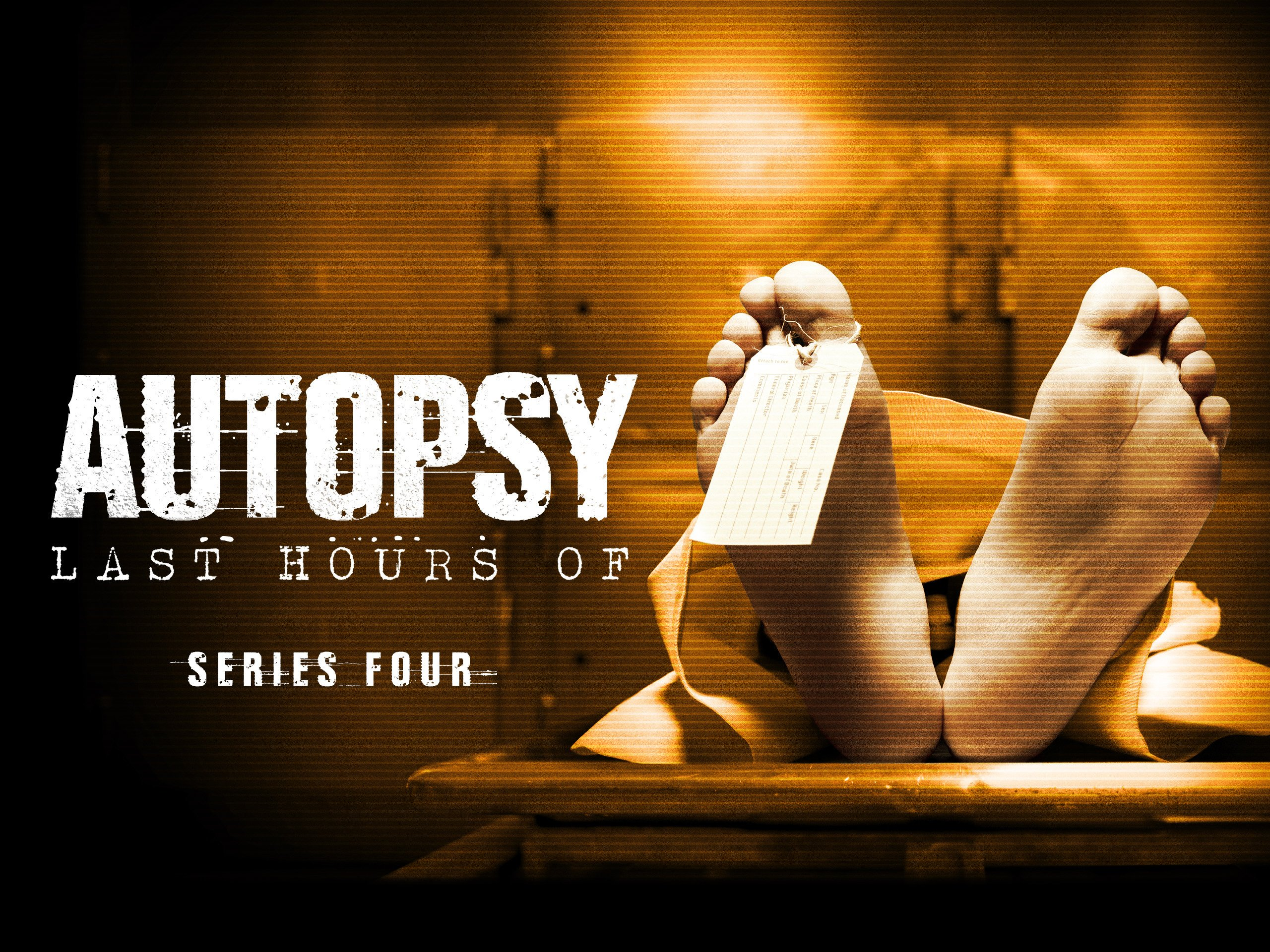 Watch Autopsy The Last Hours Of Series 4 Prime Video