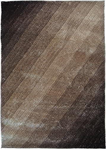 Blazing Needles Light Rays Gradated Shag Rug, 5-Feet by 7-Feet, Beige Brown