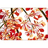 Jason Vibrant Bloom Placemats, Set of 4