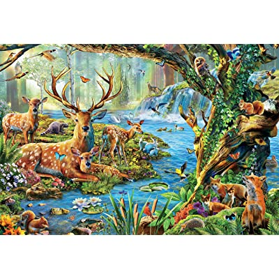 Ceaco 3501-13 Forest Life Puzzle - 2000Piece: Toys & Games