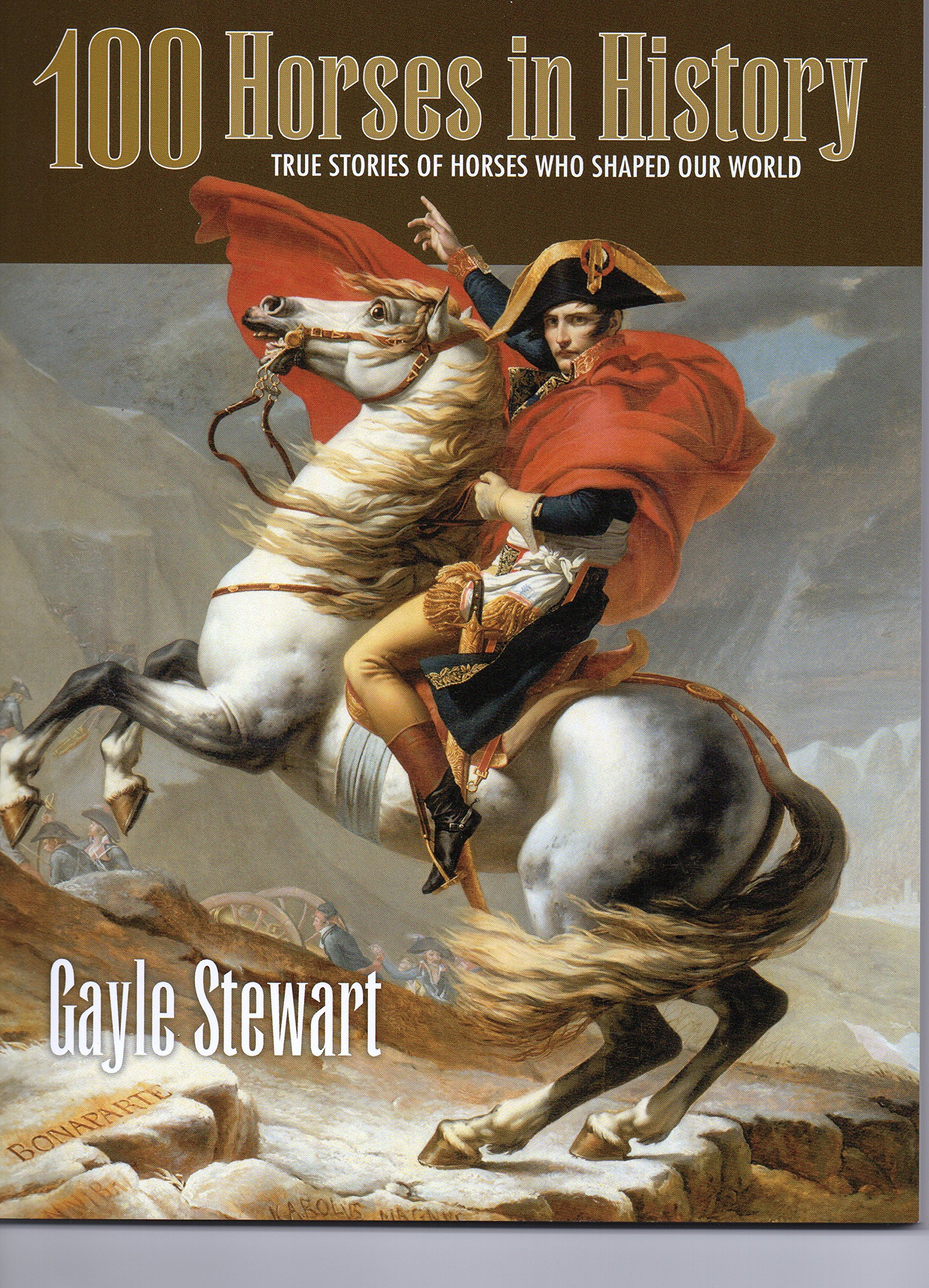 100 Horses In History  True Stories Of Horses Who Shaped Our World: Gayle  Stewart: 9781581503500: Amazon: Books
