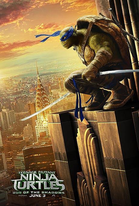 Amazon.com: WMG Leonardo - Teenage Mutant Ninja Turtles: Out ...