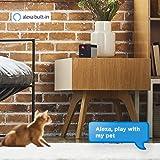 [New 2019] Petcube Play 2 Wi-Fi Pet Camera with
