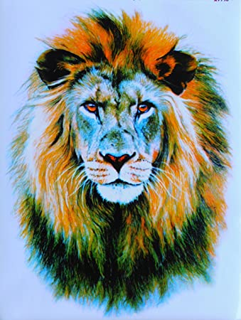 Dd Löwe König Der Tiere Lion Gross Sticker Aufkleber Folie 1 Blatt 340 Mm X 260 Mm Wetterfest Auto