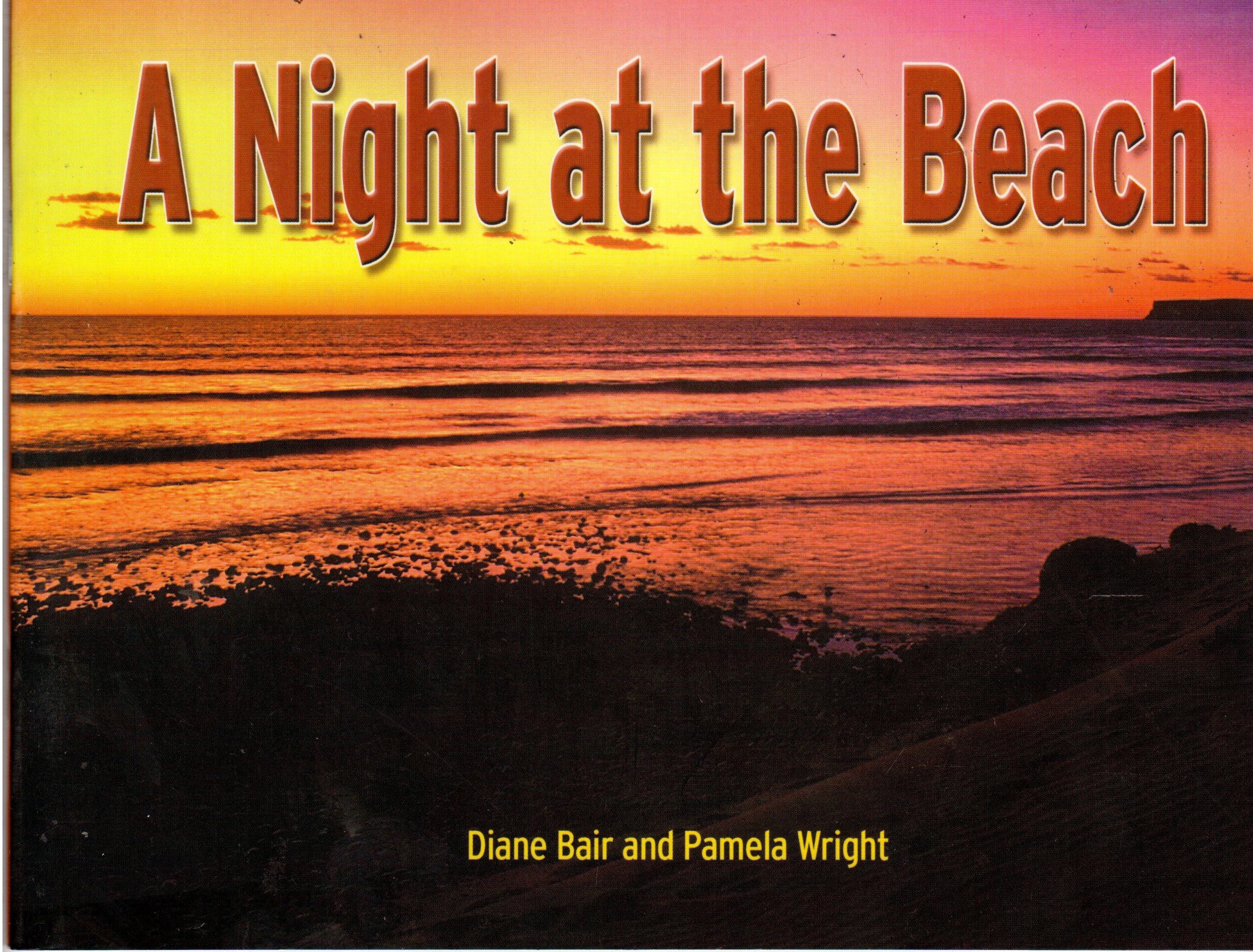 Download A Night at the Beach, Grade 5 pdf epub