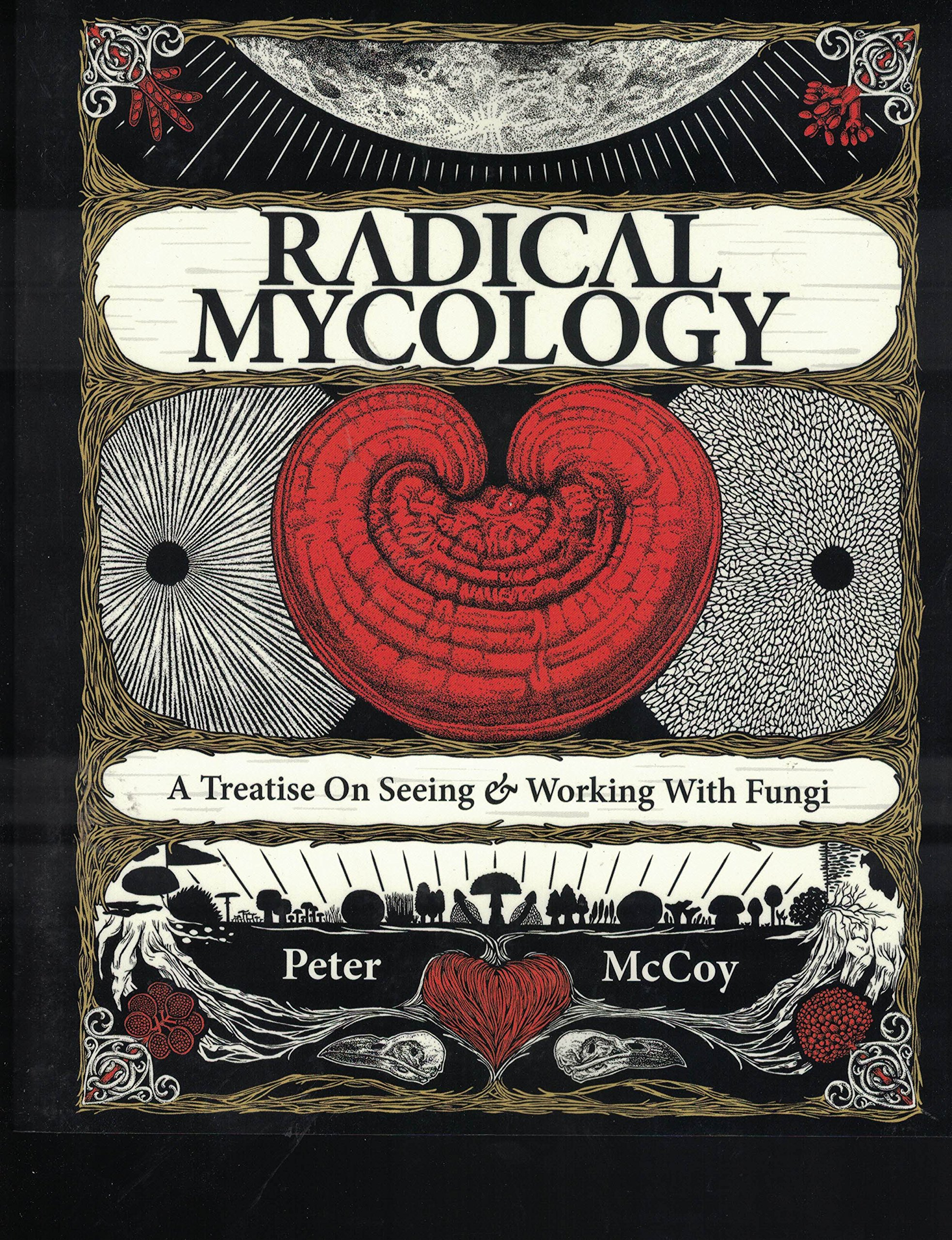 Radical Mycology: A Treatise On Seeing And Working With Fungi, Peter McCoy