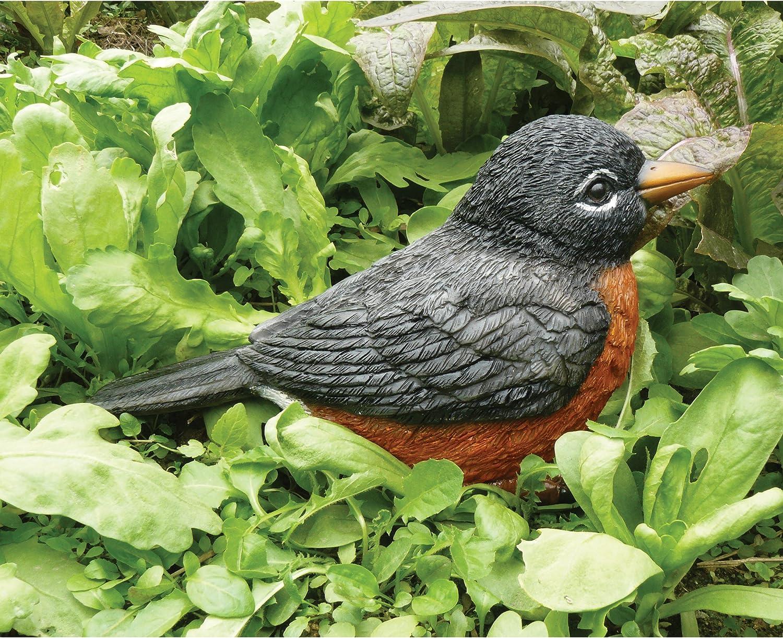 American robin clay bird charm