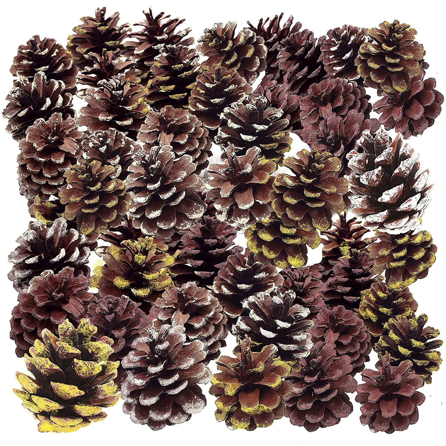 Large 4 Pine Cones. Thanksgiving Home Decoration Set. Use it Harvest Pumpkins Gourds Pinecones Leaves to Decorate Make Your own Holiday Wreath Centerpiece. Fall Autumn Wedding Décor ECP