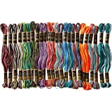 Iris 1380 Ombres Embroidery Thread Pack (24 Pack), 8.75 yd