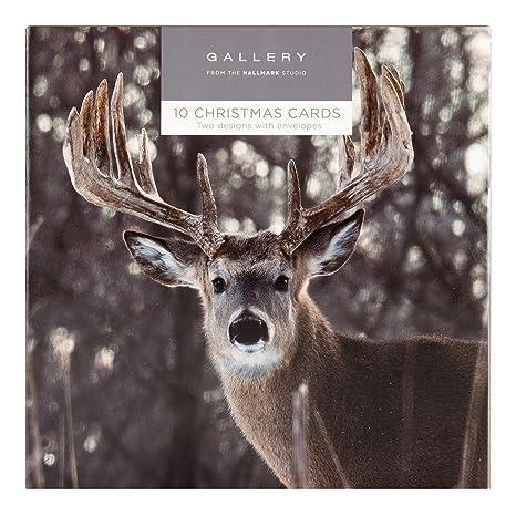 Amazon.com: Hallmark – Tarjeta de tarjeta de Navidad Galería ...