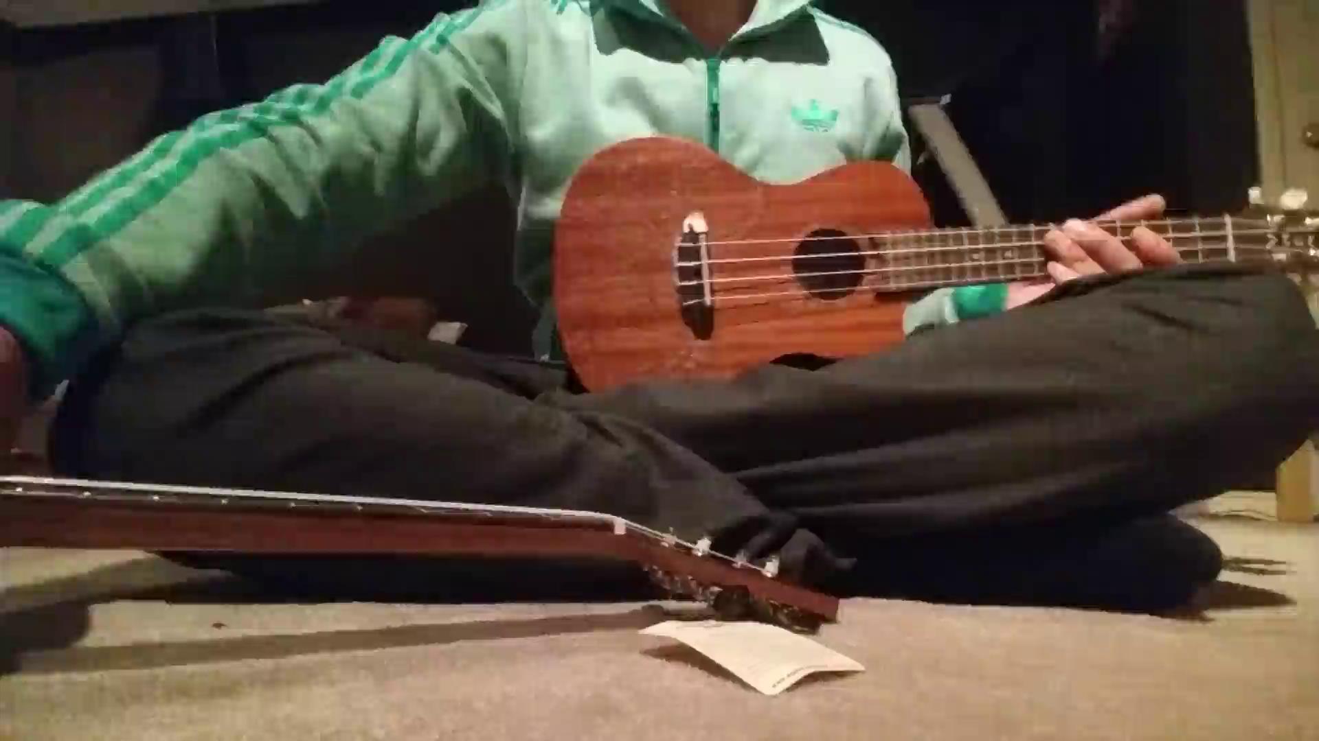 luna high tide series zebrawood baritone acoustic