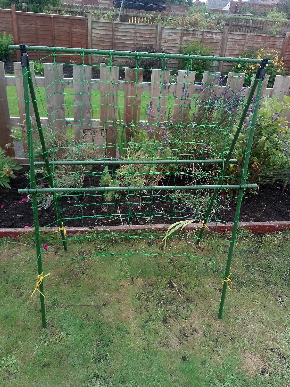 Easynets - Juego completo de soporte para planta de guisante ...