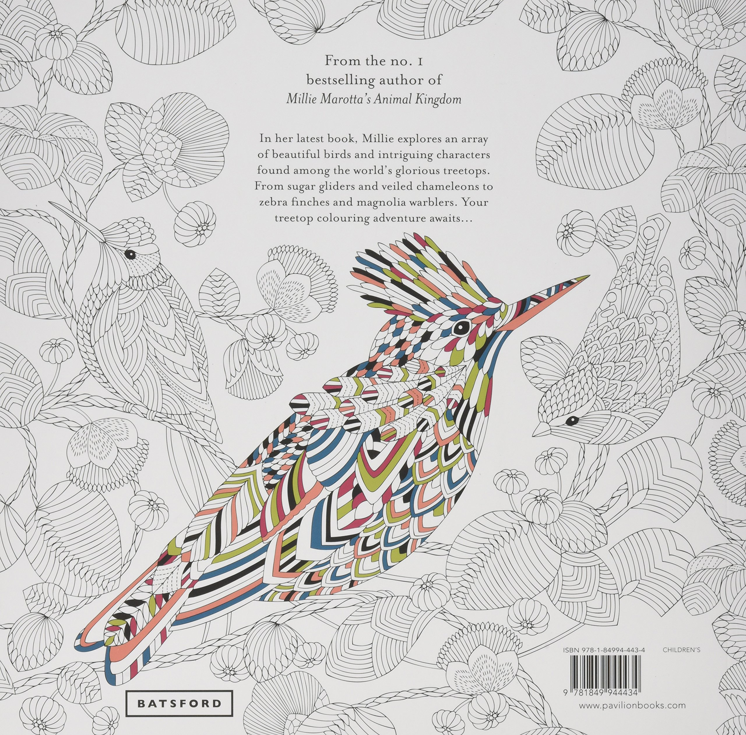 Millie Marottas Beautiful Birds And Treetop Treasures A Colouring Book Adventure Marotta 9781849944434 Books