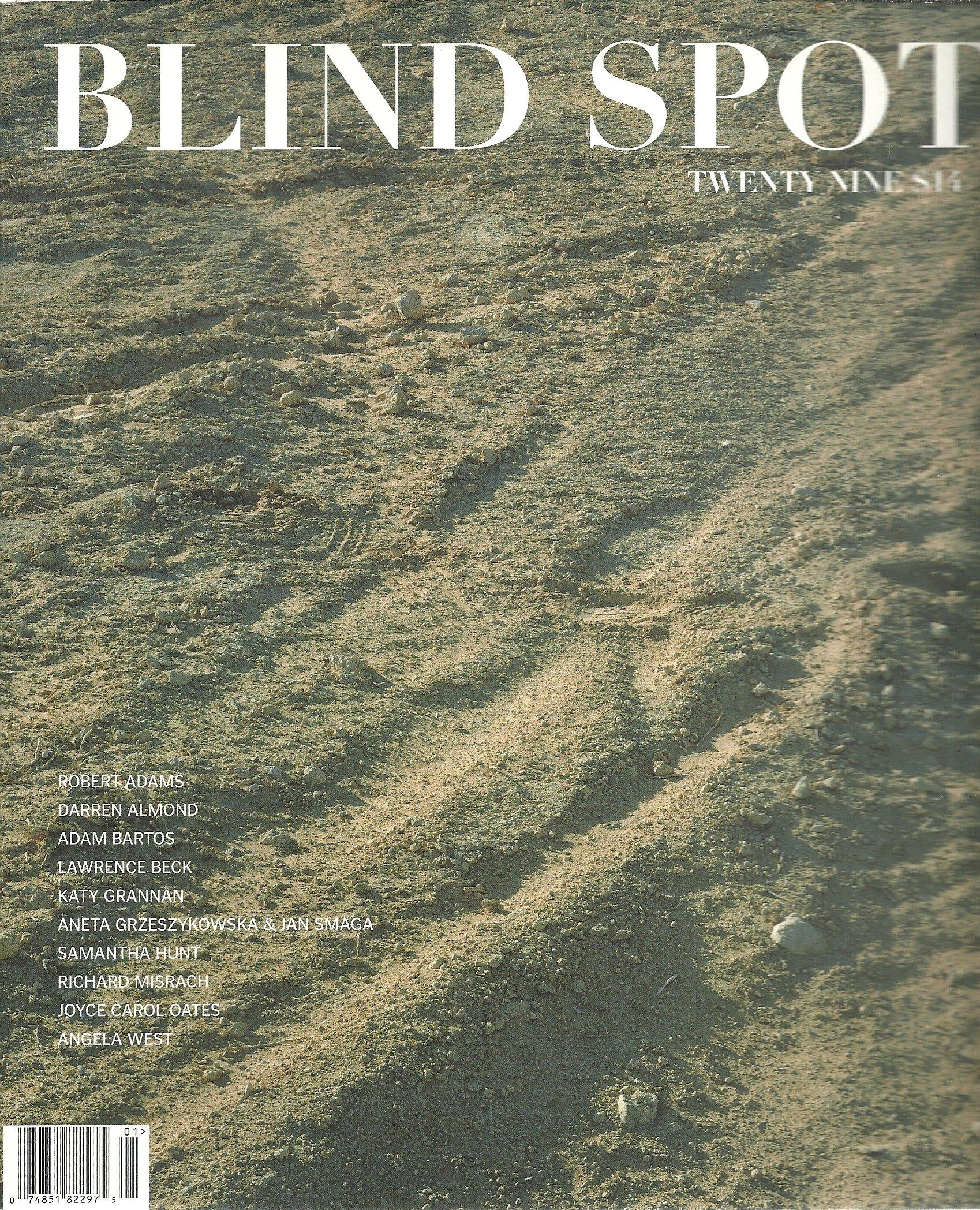 Blind Spot (Magazine, Twenty Nine (29)) pdf epub