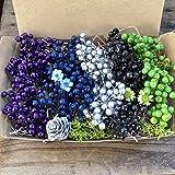 15番 5色セット ペッパーベリー ドライフラワー ブルー系 花材