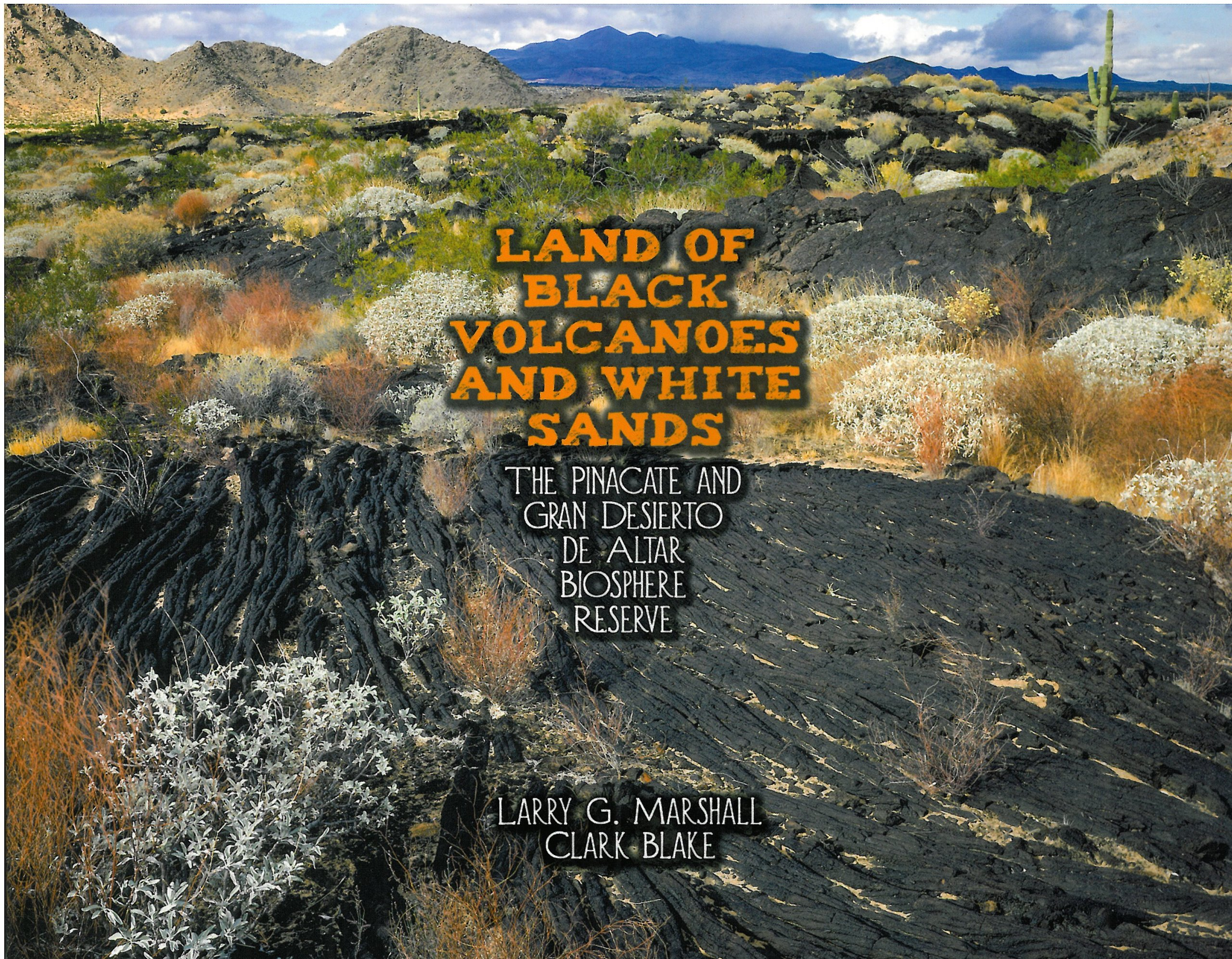 Read Online Land of Black Volcanoes and White Sands ebook