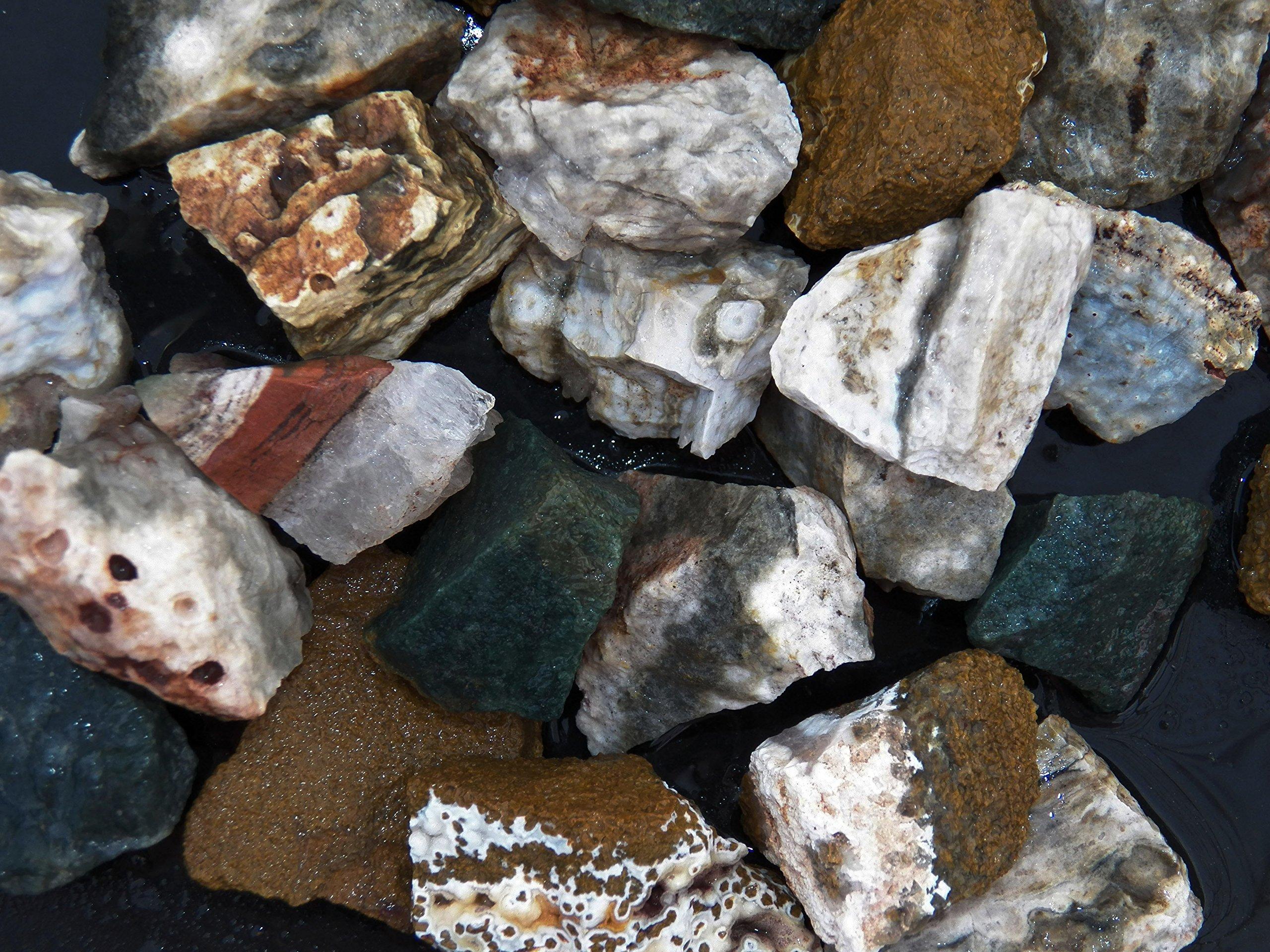 Fundamental Rockhound Products: Rough Ocean Jasper Bulk Rock for Tumbling, Metaphysical Use, Gemstones Healing Crystals Wholesale Lot from Madagascar (11 lb)