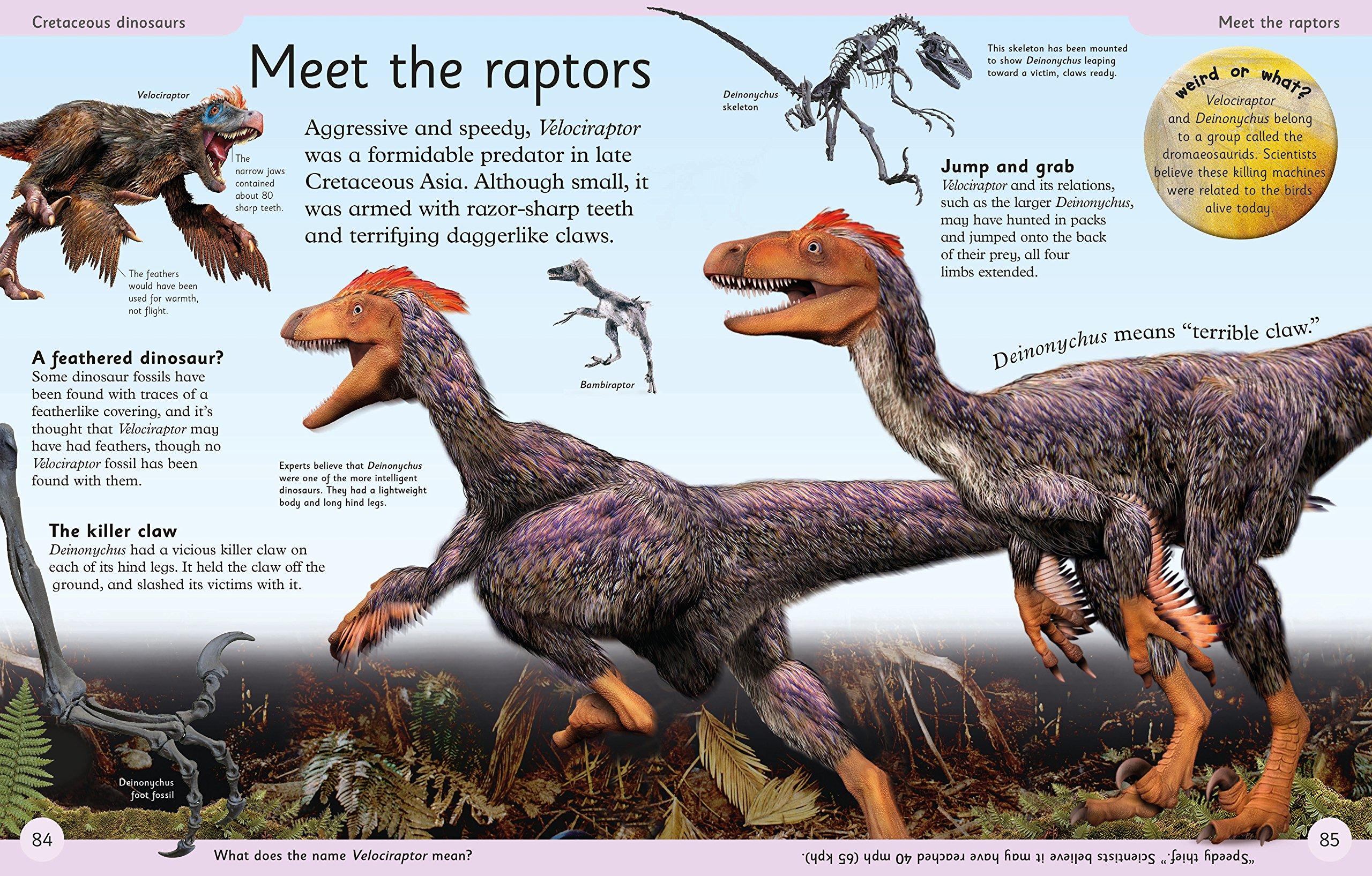 First Dinosaur Encyclopedia (DK First Reference) by DK Publishing Dorling Kindersley (Image #4)
