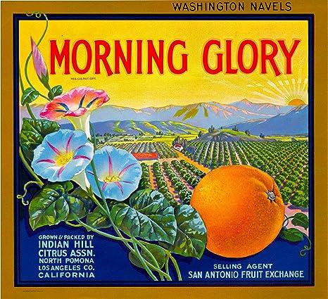 Riverside California Oranges Orange Citrus Fruit Crate Label Art Print