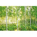 Komar papel pintado para pared con paisaje 8 piezas - Fotomurales national geographic ...