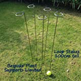Metal Plant Supports Loop Stakes 5 pack 80cm, 100cm or 130cm tall (100cm)